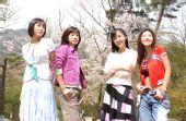2007中国荧屏最受欢迎韩剧― 《小妇人》
