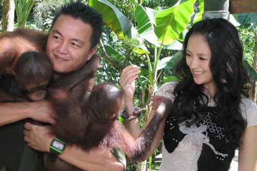 章子怡在与可爱的猩猩玩耍
