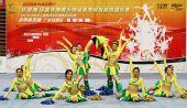 图文:奥运啦啦操选拔广东赛区 比赛精彩迭出