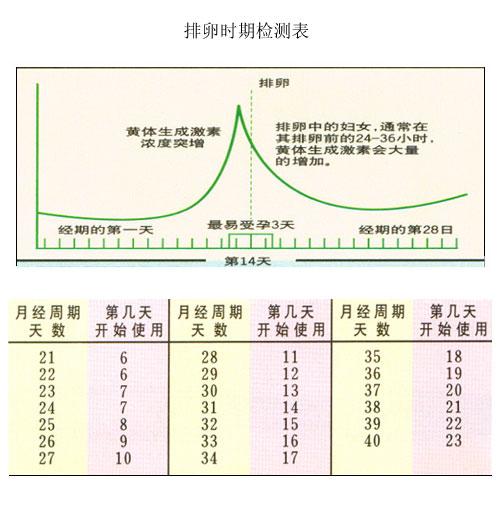 女性排卵时期检测表 搜狐母婴