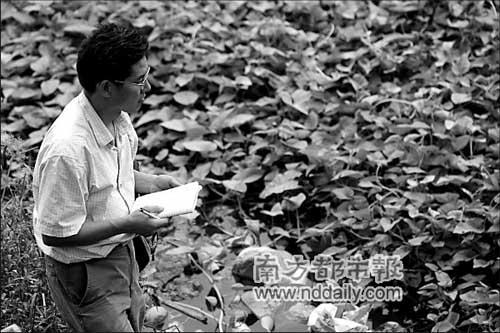 科考队负责植物研究的周老师在仔细查看河边的植物,受污染严重的水域常有水浮莲大量生长。