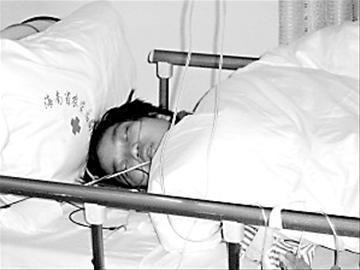 史道红捐献的肾脏已经植入何一文的体内。(来源:信息时报)