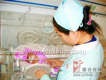 护士用自己的乳汁喂养弱婴