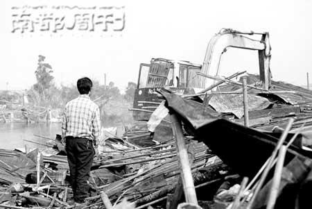 在长州,猪场老板眼睁睁看着自己的猪棚被巨大的机器拆除。  本版摄影 梁清