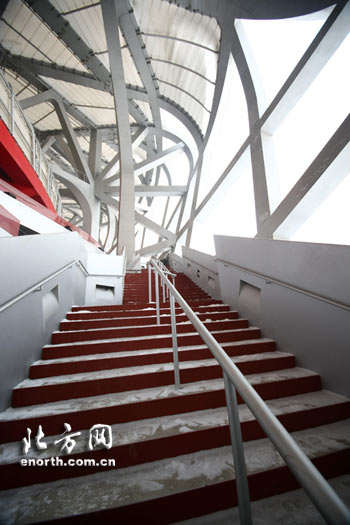 """""""鸟巢""""内的楼梯"""