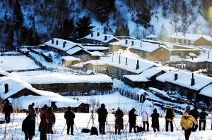 东北雪乡:大山深处雪舞林场