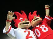 阿尔卑斯行动——探访2008欧洲杯