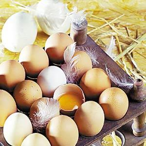 鸡蛋里面所含的蛋白质丰富,而且经济。(资料图片)