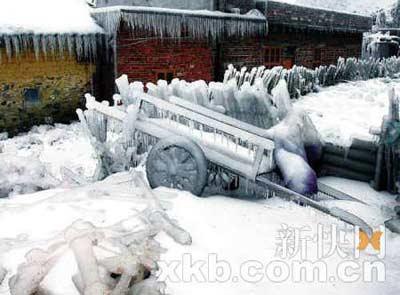 云岩镇红光村,一户人家拉货的板车被冻成冰雕,冰冻天气给灾区人民生活带来不便。记者 王小明/摄