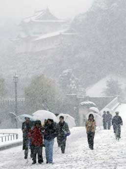 2月3日,日本东京等地遭遇大雪。