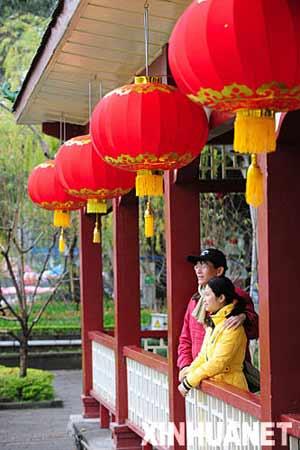 福州西湖公园悬挂的红灯笼让市民提前感受到新年的气氛(2月5日摄)。