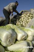 农业部:农产品不会出现大面积脱销、断档情况