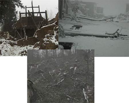 由于房顶上最厚时积了五六厘米的冰,最终把房子压塌了,屋子里所有的物品都被砸烂,地上堆满了被冰雪压倒的树木,有的树木已经生长了十多年,倒掉的电线杆随处可见,虽然凝冻天气已经接近尾声,但田地里仍然积满了厚厚的冰雪。