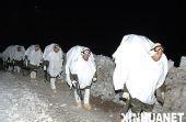 土耳其军队又打死77名库尔德工人党武装人员