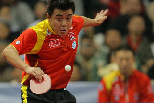 图文:世乒赛团体赛最佳回球动作 王皓白鹤亮翅