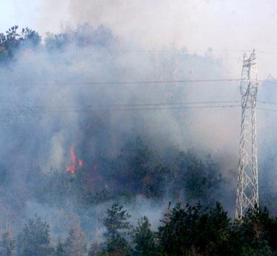 昨日下午,通山县部分地区仍在遭受山林大火的威胁