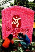 2008朵康乃馨拼出中国印