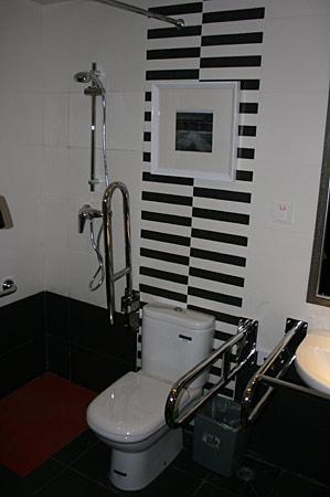无障碍卫生间设备