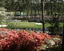 2009美国高尔夫名人赛