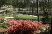 图文:2008美国大师赛将打响 花海中的美丽球场