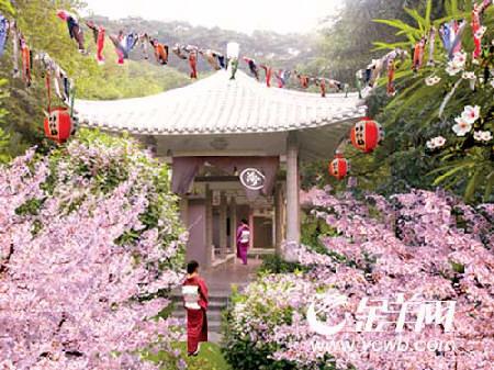 广州去雕塑公园看樱花去