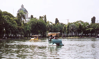 曼谷火炬接力路线解读之曼谷动物园