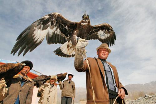 柯尔克孜族的养鹰人