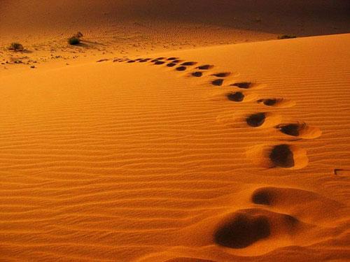 上帝画在中国最美的五大沙漠[组图]