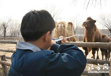 动物园开始春季防疫 打针吓坏小动物(组图)