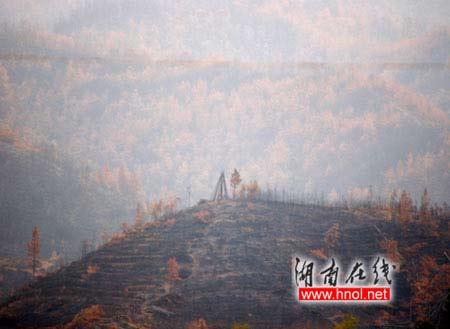距石牛寨景区大约二十公里的地方,山林因森林火灾而被大面积毁损