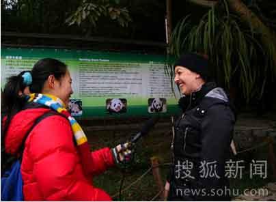 《猫》的全体剧组成员参观熊猫基地