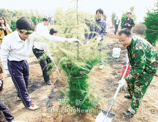 李沧区2000多名干部群众官兵义务植树