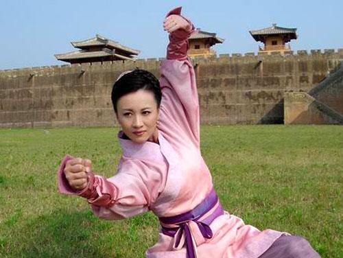 武术世界冠军李菲
