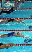 图文:全国冠军赛第二日预赛 选手们背身跃入水