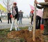 图文:射击队北戴河植下奥运冠军树 杜丽在劳动