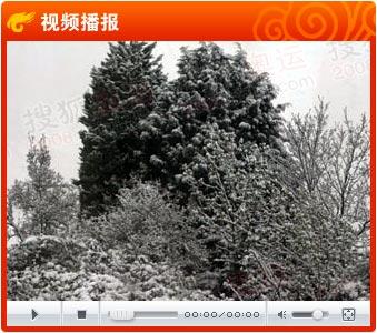 伦敦火炬传递遭遇大雪