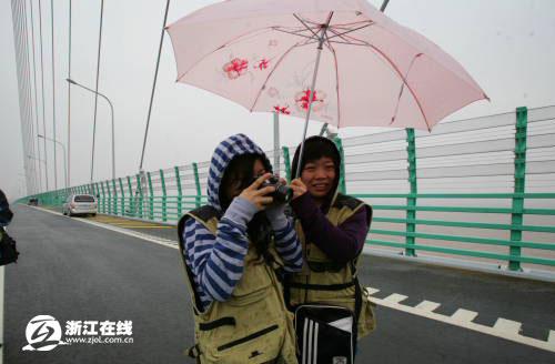 网记聚焦世界第一跨海大桥