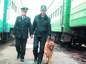 长沙铁警在使用搜爆犬对旅客列车车底进行安检。朱红梅