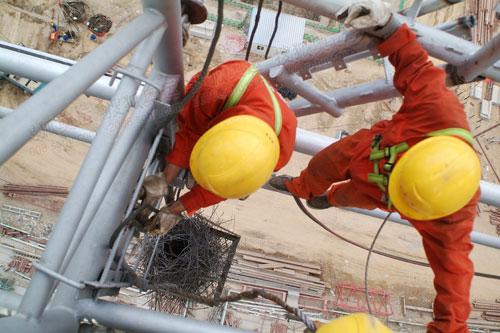 """工人在准备取下""""小鸟巢""""前固定绳子"""