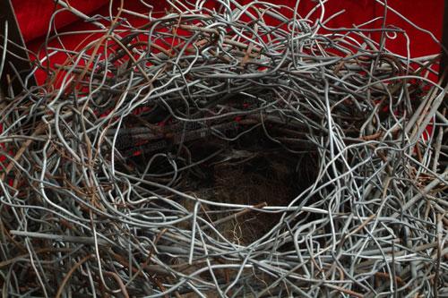 小鸟巢结构