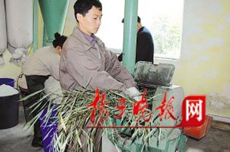 粉碎竹子做竹粉。
