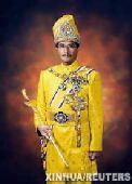 马来西亚最高元首阿比丁