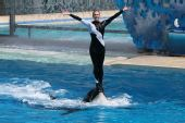 图文:国足畅游海洋公园 训练师要求掌声