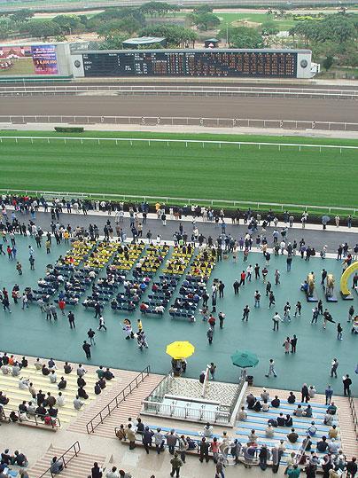香港火炬传递路线解读- 沙田马场
