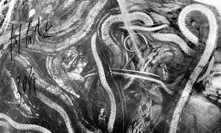 昨日,一只标有30斤字样的袋子里,野生蛇相互缠绕。当日,从长沙黄花国际机场查获的近1吨野生蛇放生省植物园。图/记者秦楼 实习生张寅宇