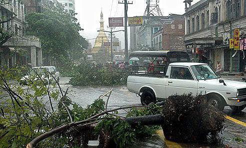 5月3日,在缅甸最大城市仰光,几棵被刮倒的树木阻碍了道路交通。(新华网)
