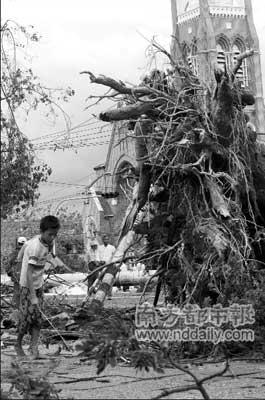 4日,在缅甸仰光,一名居民从被热带风暴连根拔起的树木旁走过。