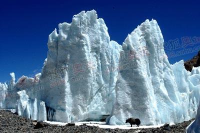 有时候你甚至不敢相信眼前的这是冰塔林,而是会产生错觉以为是玉雕