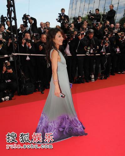 电影《切格瓦拉》首映-杨紫琼长裙溢美