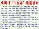 改革开放30年 大包干 小岗村 搜狐2008 中国速度全国行